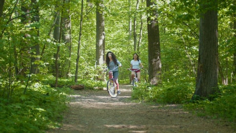 Girls riding their bicycles through the forest
