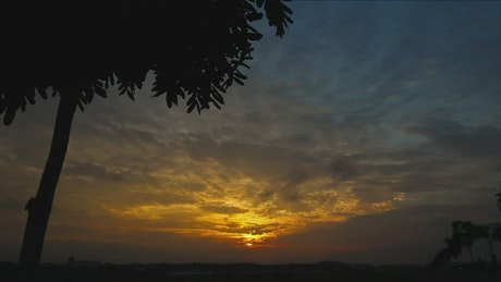 Golden sunrise in the Autumn