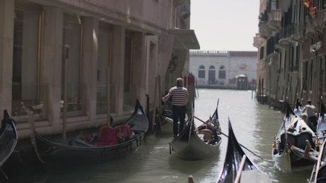 Gondolas on a river