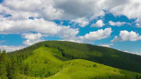 Green mountain landscape in spring