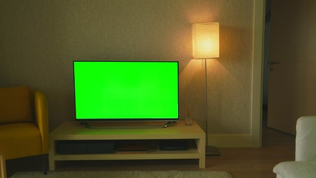 Green screen television in the living room