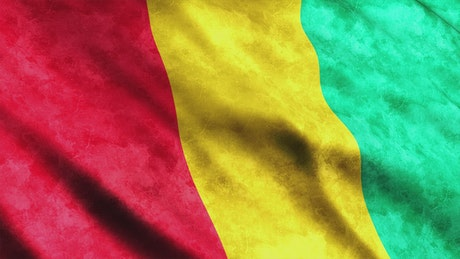 Guinea flag while waving in 3D