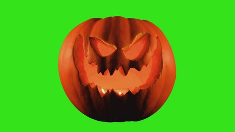 Halloween pumpkin on a chroma green background
