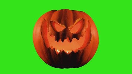 Halloween pumpkin on a chroma green background