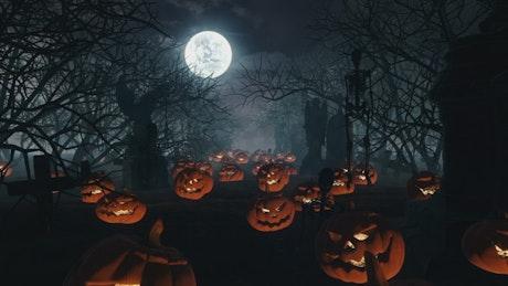Halloween pumpkins over graveyard graves