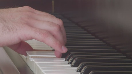 Hand of a musician playing the keys of a piano
