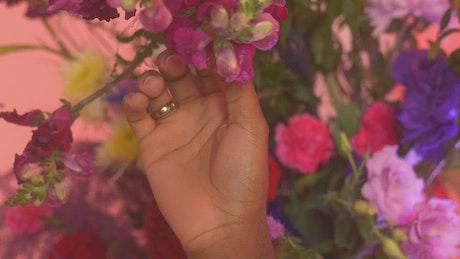 Hand of an LGBTQ man stroking flowers