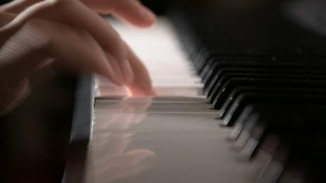 Hands of a musician playing the piano in detail