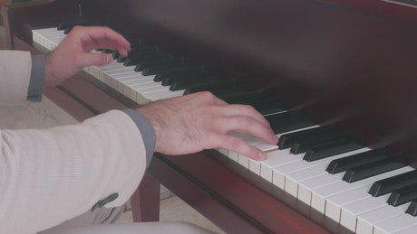 Hands of a skillful and elegant pianist playing