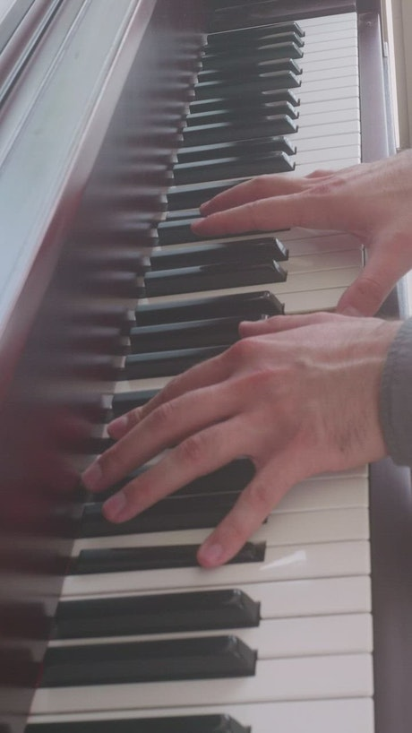 Hands of a talented pianist skillfully playing