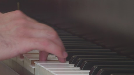 Hands of an expert pianist playing a song