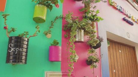 Hanging flowerpots in the facade
