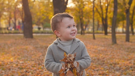 Happy child playing with autumnal leaves