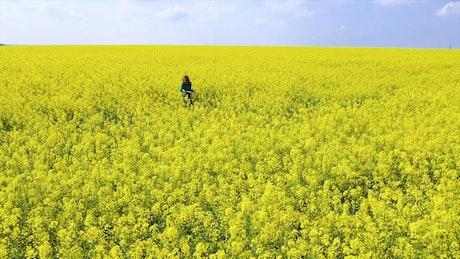 Happy woman on a rapeseed field