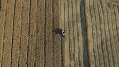 Harvesting a field