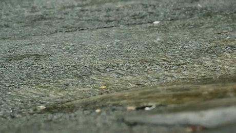 Heavy rain on a road surface