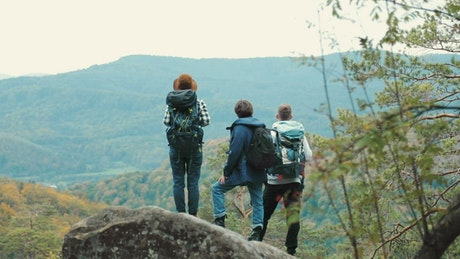 Hikers admire the forest valley landscape view