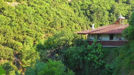 Holiday house in the mountain forest