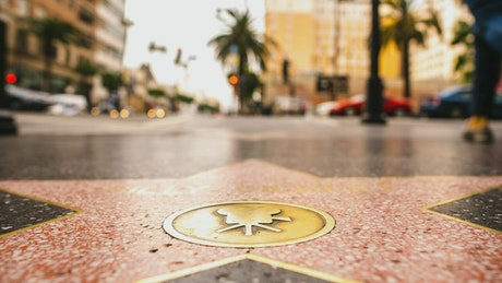 Hollywood star of fame