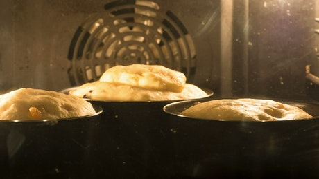Home made bread rising inside the oven