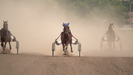 Horse race on a dirt road