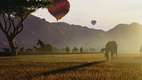 Hot air balloons over wild horses in nature