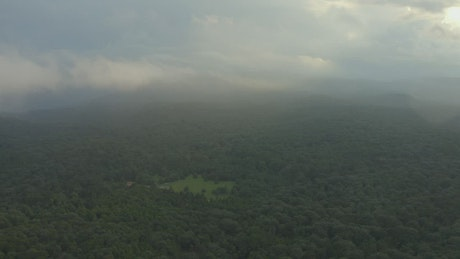 Huge forest seen from the heights during a cloudy day
