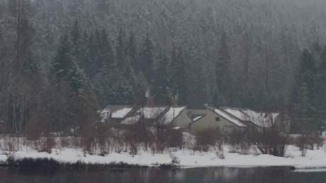 Huts in a snowy forest