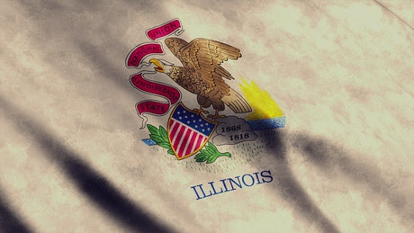 Illinois State flag in USA