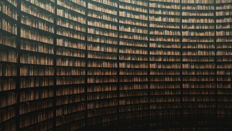 Immense walls full of books