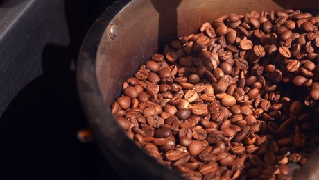 Industrial coffee roaster moving coffee beans