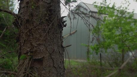Industrial warehouse between trees and vegetation