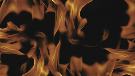 Intense flames on black background