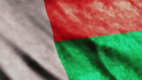 International Madagascar flag