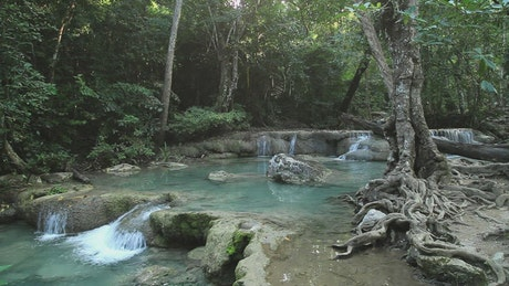 Jungle river and small waterfalls