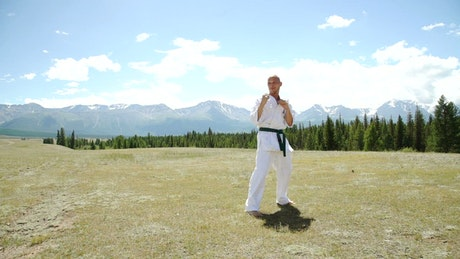 Karate black belt high kick with outdoor landscape