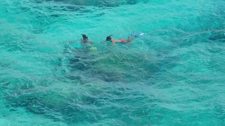 Kids snorkeling in tropical waters