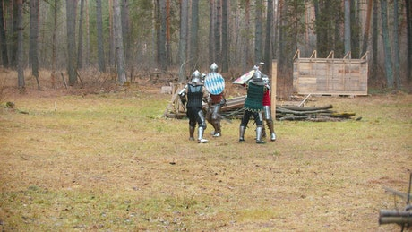 Knights with swords fighting in the woods