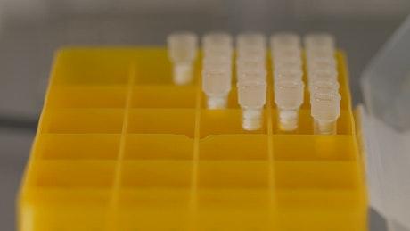 Laboratory sample tray