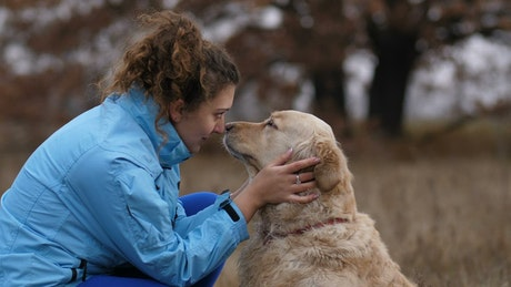 Labrador licks his owner