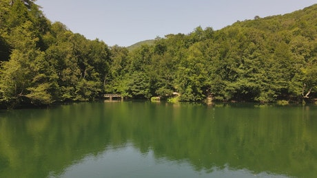 Lake in a wooded park, low aerial shot
