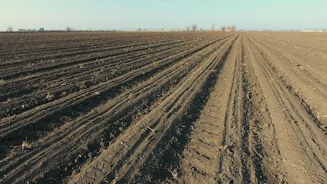 Large agricultural land