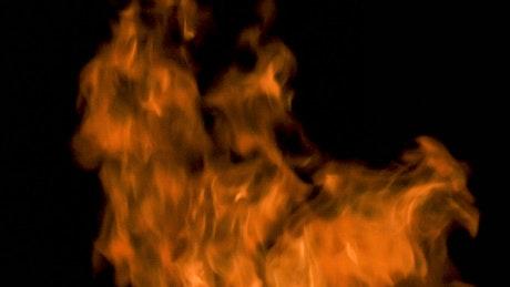 Large orange flames on black background