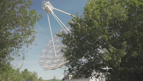 Large satellite antenna in the forest