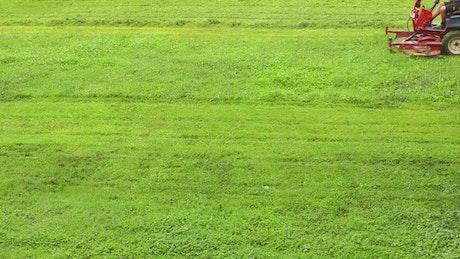 Lawn mower on a green grass