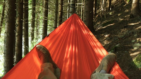 Laying in a hammock in the forest