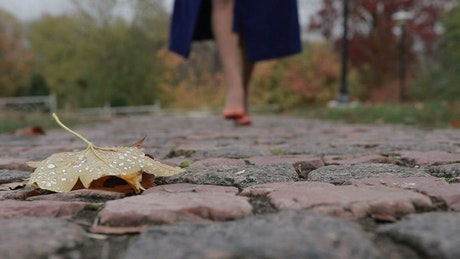Leaf on the ground in a park, a woman walks past