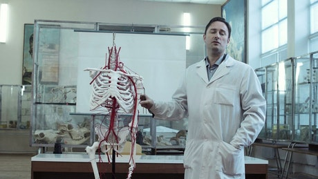 Lecture on human anatomy