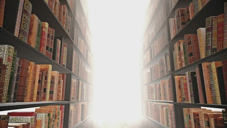 Light at the end of bookstore shelves