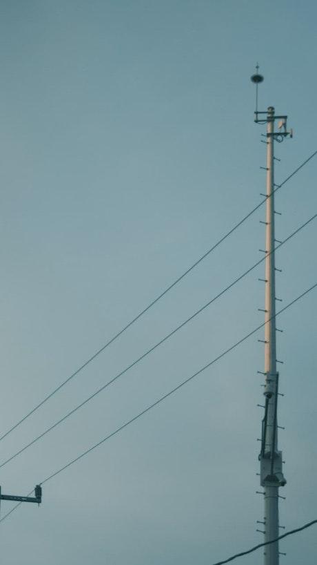 Light posts